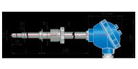 Конструктивное исполнение ДТПХ055.И.EXI