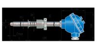 Конструктивное исполнение ДТПХ095.И.EXI