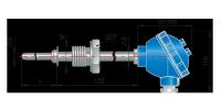 Конструктивное исполнение ДТПХ265.И.EXI